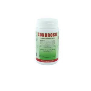 condrosil