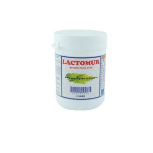 lactomur
